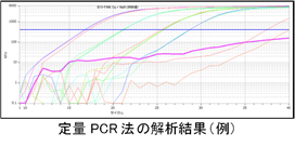 2_PCR.png