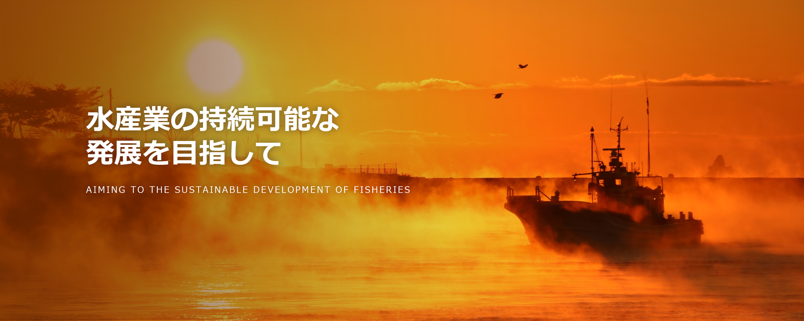 水産業の持続可能な発展を目指して AIMING TO THE SUSTAINABLE DEVELOPMENT OF FISHERIES